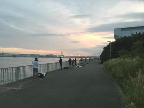 日没後も多くの方が釣り続行中