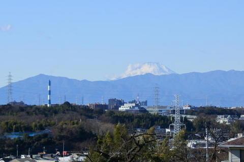 今年はやや雲隠れなものの富士山が見えた